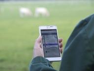 virtic bringt mobile Zeitwirtschaftslösung für Tierarztpraxen auf den Markt