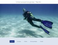 Homepage-Baukasten: Update bringt Website-Importer und neue Designs