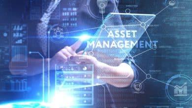 Photo of Wie Pimcore DAM Unternehmen bei der Organisation ihrer Daten unterstützt
